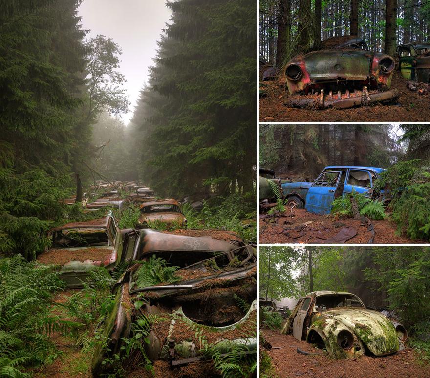 naturaleza-recupera-lugares-abandonados-10