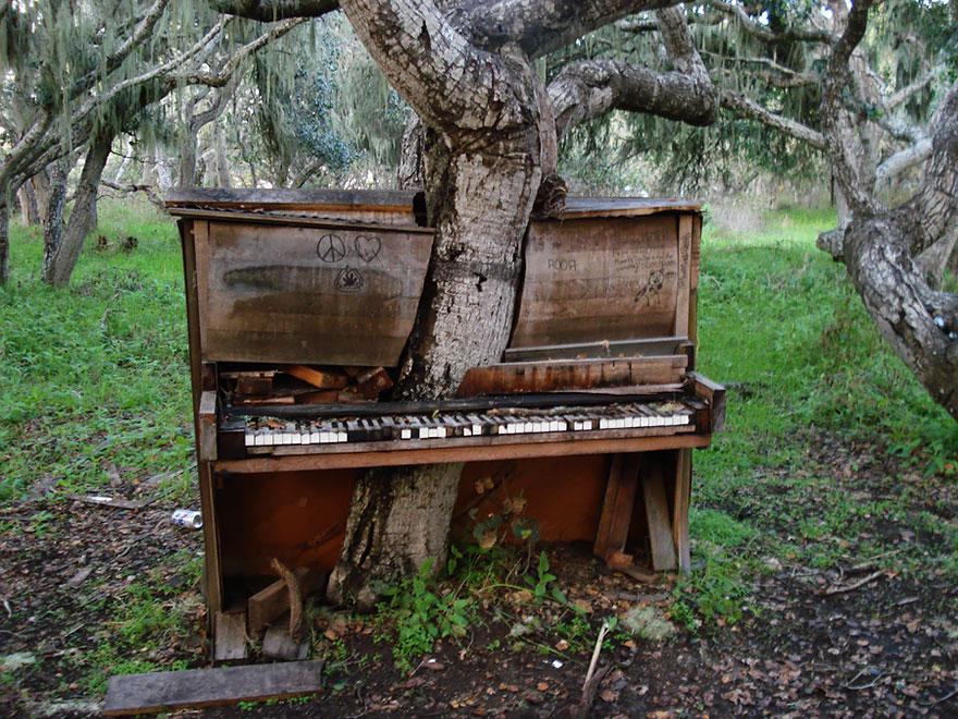 naturaleza-recupera-lugares-abandonados-11