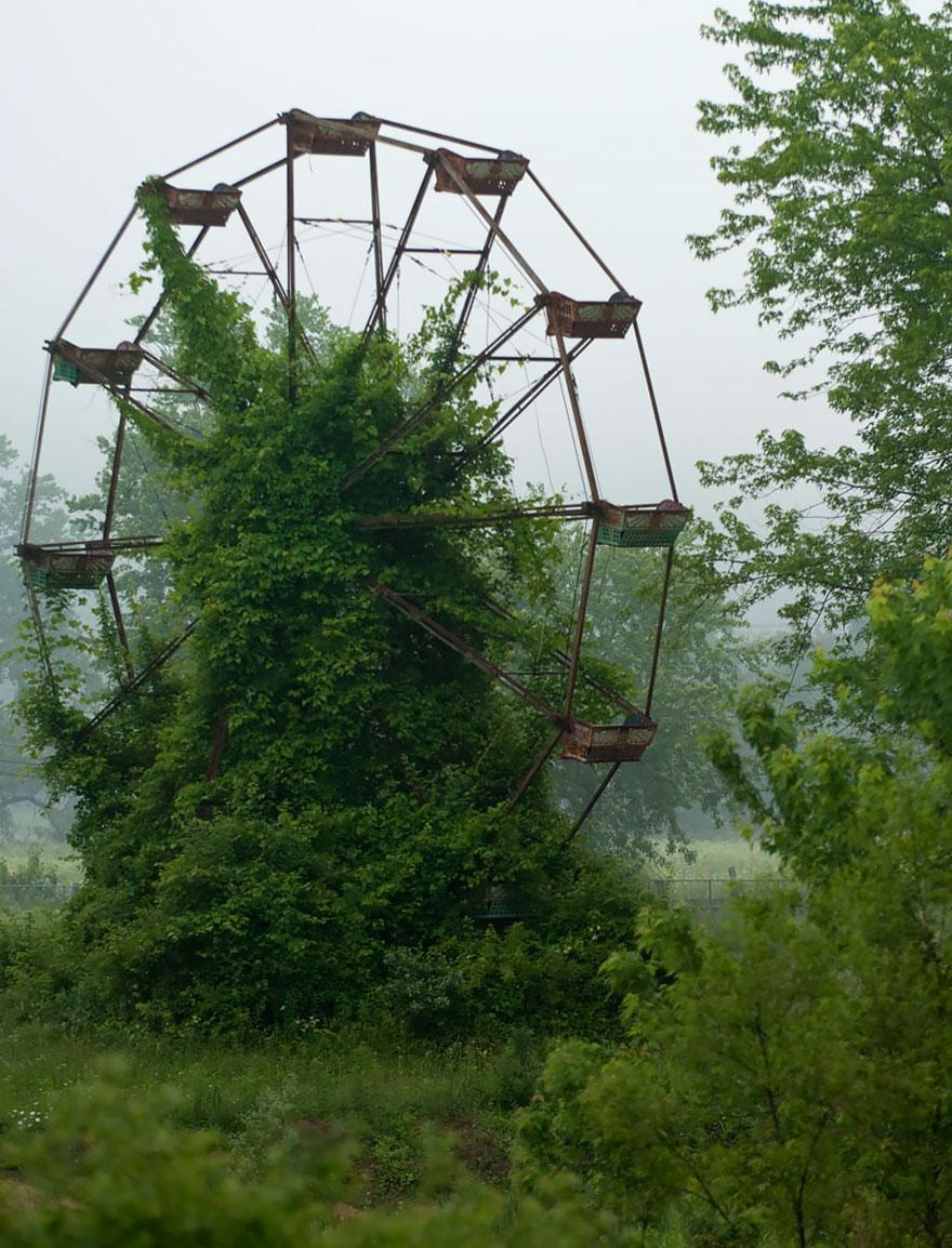 naturaleza-recupera-lugares-abandonados-18