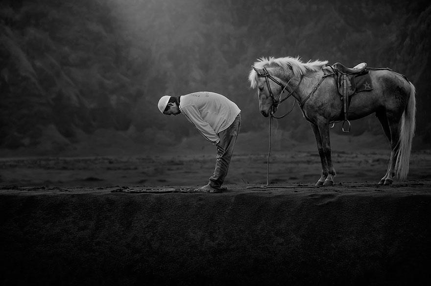 fotos-finalistas-premios-sony-fotografia-2015 (19)