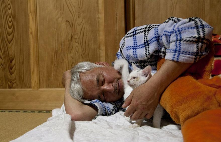 Qué hacer ante un caso de maltrato animal Guardian-fukushima-abandoned-animals-naoto-matsumura-11