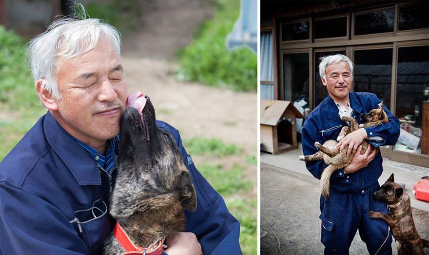Qué hacer ante un caso de maltrato animal Guardian-fukushima-abandoned-animals-naoto-matsumura-16