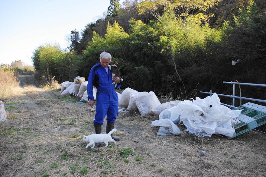 Qué hacer ante un caso de maltrato animal Guardian-fukushima-abandoned-animals-naoto-matsumura-3