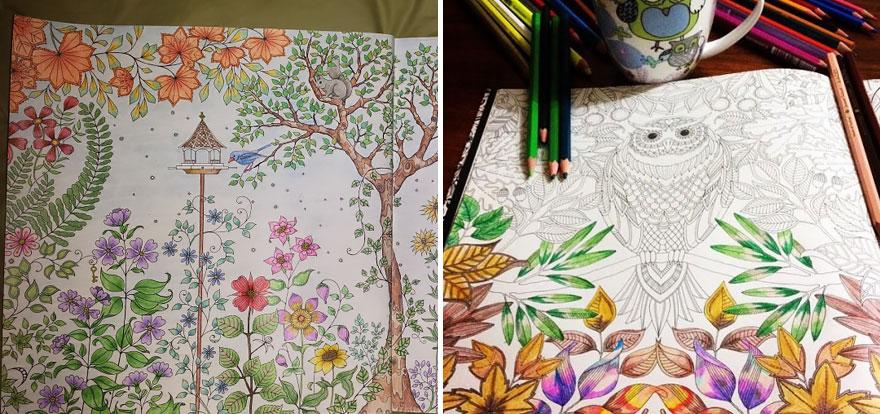 libro-colorear-adultos-johanna-basford (12)