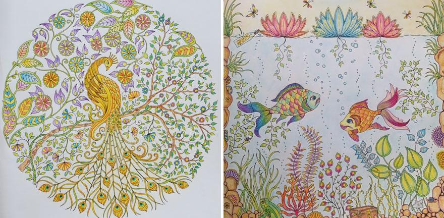 libro-colorear-adultos-johanna-basford (13)