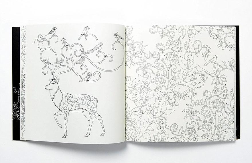libro-colorear-adultos-johanna-basford (2)