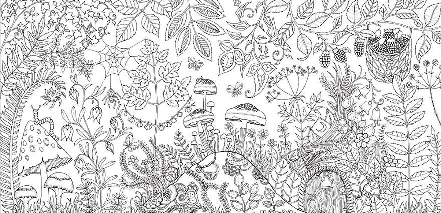 libro-colorear-adultos-johanna-basford (5)
