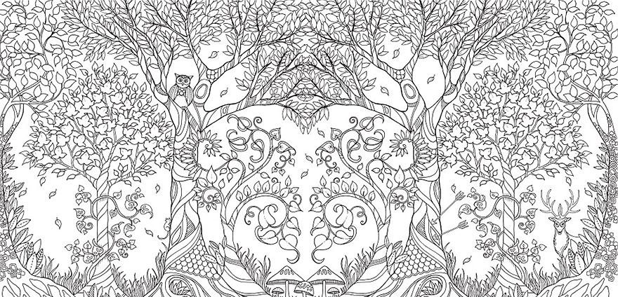libro-colorear-adultos-johanna-basford (9)