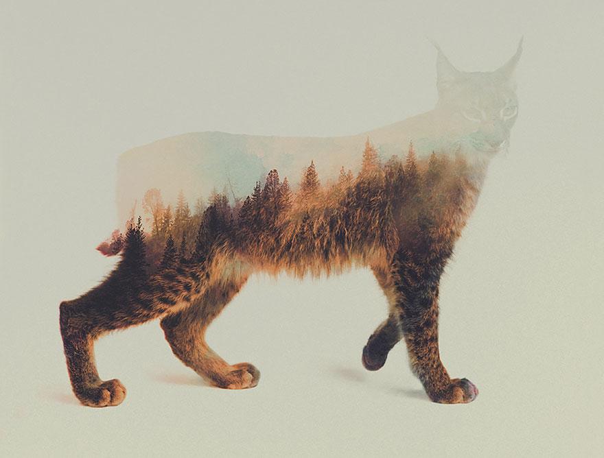 fotos-doble-exposicion-animales-andreas-lie-noruega (11)