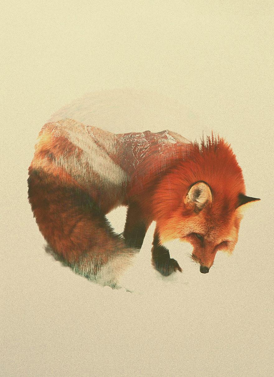 fotos-doble-exposicion-animales-andreas-lie-noruega (2)