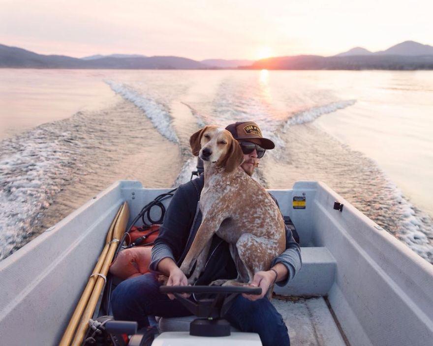 perro-maddie-viajes-moto-theron-humphrey (14)