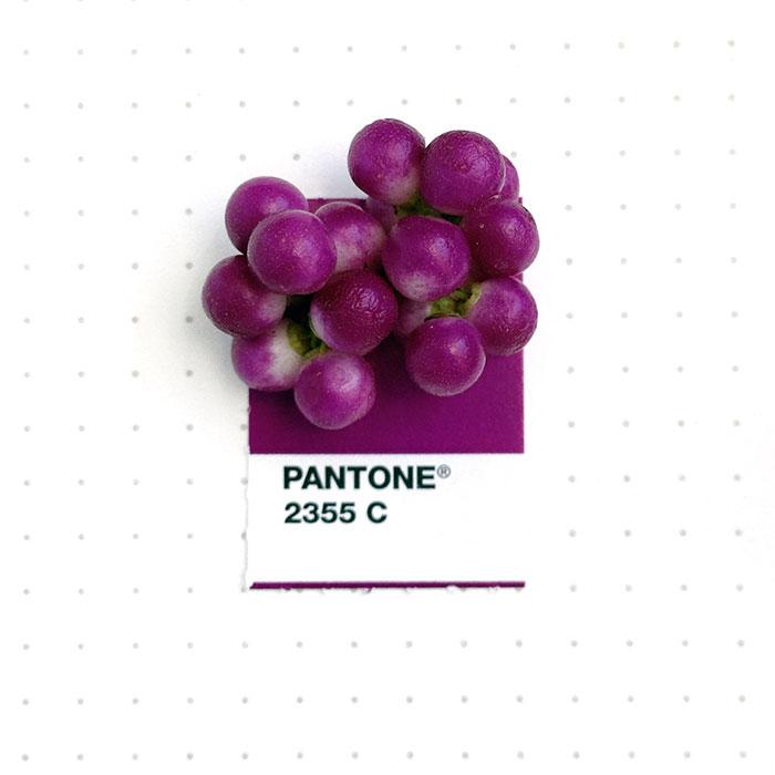 parejas-objetos-cotidianos-muestras-color-pantone-pms-inka-mathews (2)