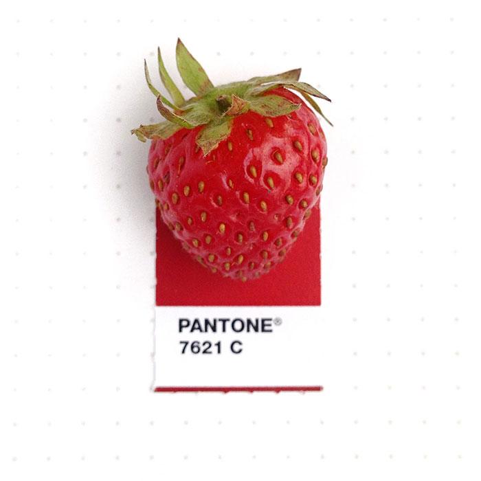parejas-objetos-cotidianos-muestras-color-pantone-pms-inka-mathews (6)