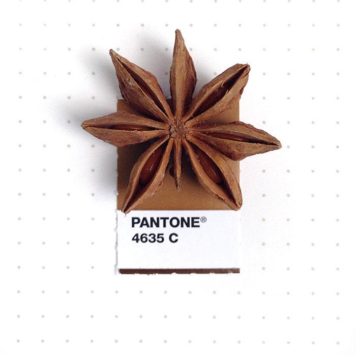 parejas-objetos-cotidianos-muestras-color-pantone-pms-inka-mathews (9)