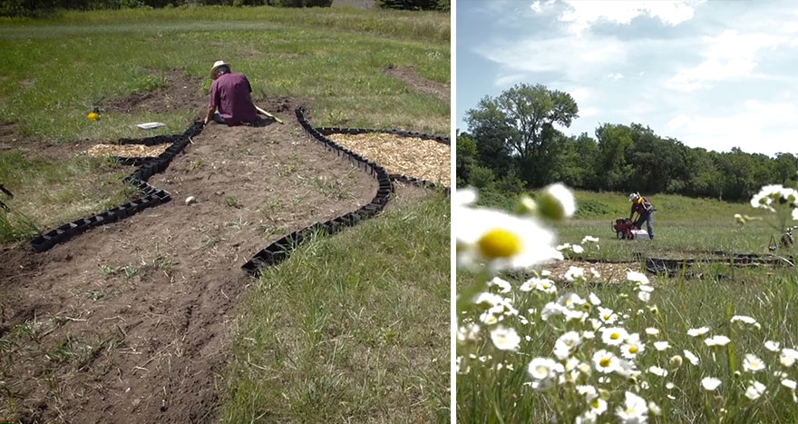 campo-plantado-pintura-van-gogh-olivos-stan-herd (4)