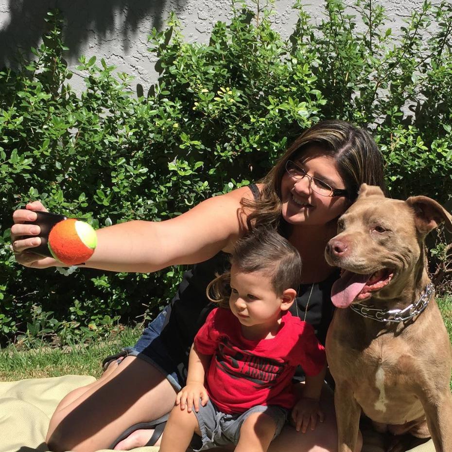 pooch-selfie-accesorio-movil-perros-jason-hernandez (3)