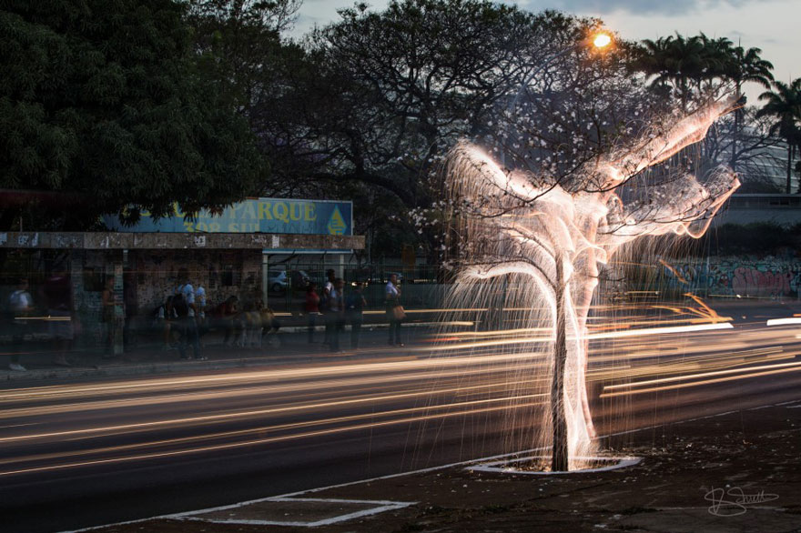 fotos-arboles-fuegos-artificiales-esculturas-impermanentes-vitor-schietti (1)