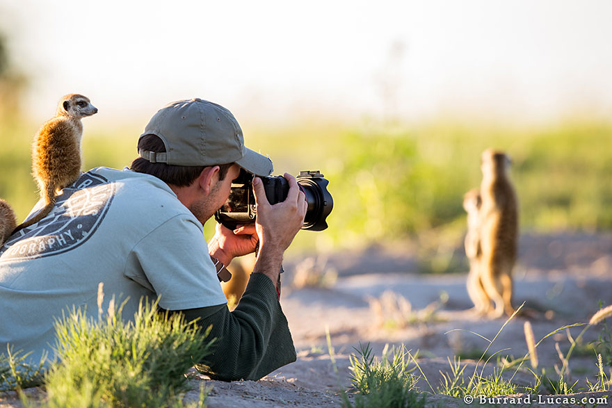25 Razones por las que ser fotógrafo de la naturaleza es el mejor trabajo que puedes tener