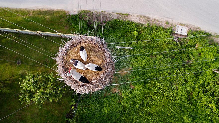 Las 10 mejores fotos hechas por drones en 2015