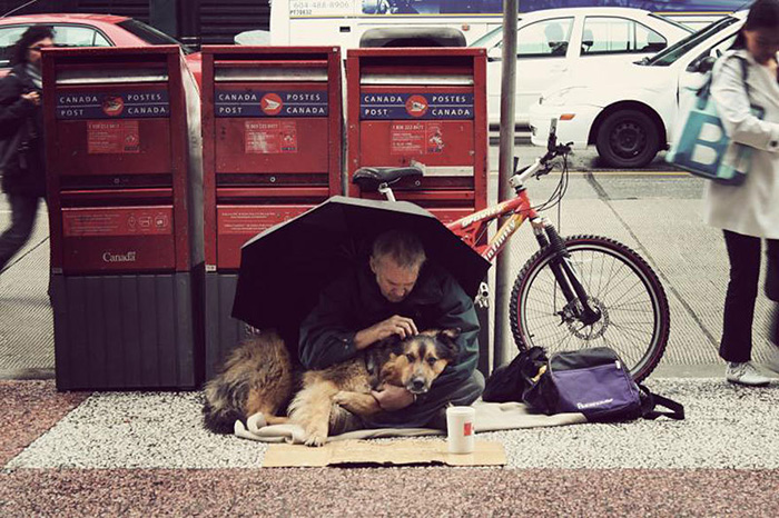 15 Fotos que demuestran que los perros te quieren sin importarles tu dinero