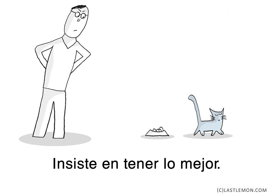 lecciones-vitales-gatos-lastlemon-12