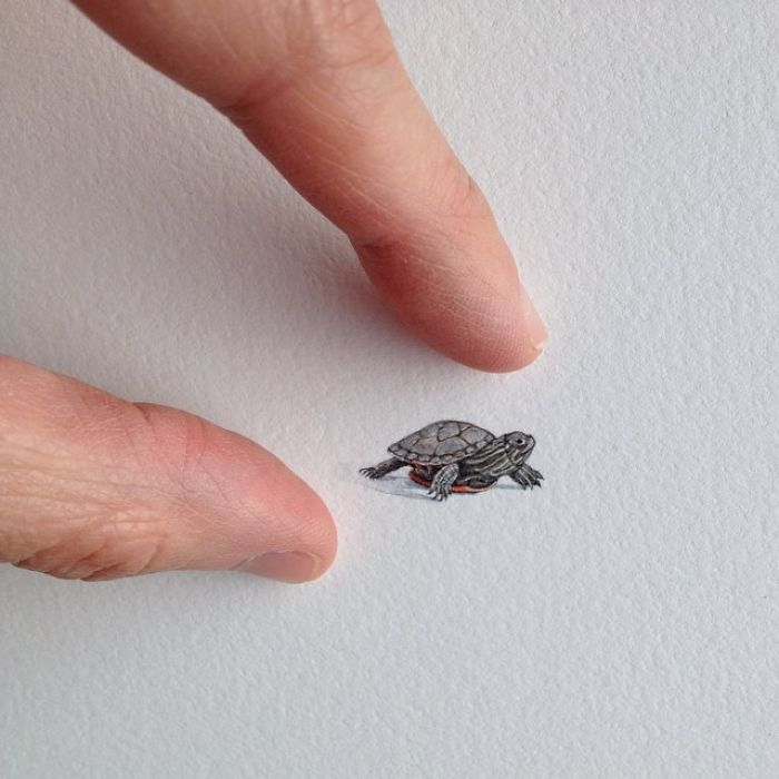 pinturas-miniatura-diarias-brooke-rothshank (7)