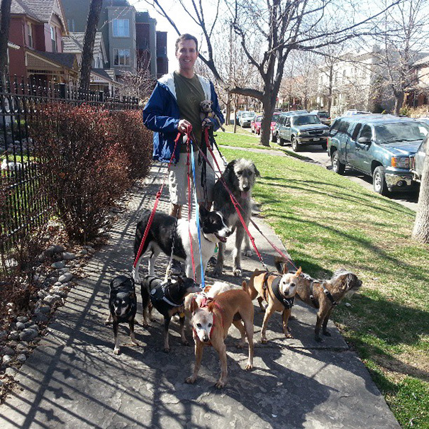 familia-perros-ancianos-adoptados-steve-greig (4)