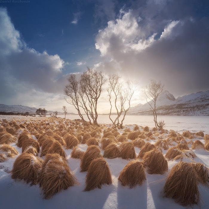 donald-trump-cultivando-su-pelo-en-tromso-noruega (2)