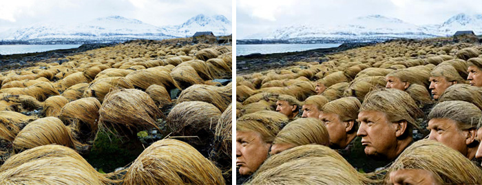 Las fotos secretas revelan dónde Donald Trump cultiva su pelo