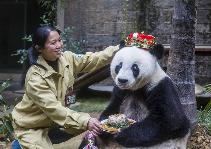 fiestas-cumpleanos-animales (1)