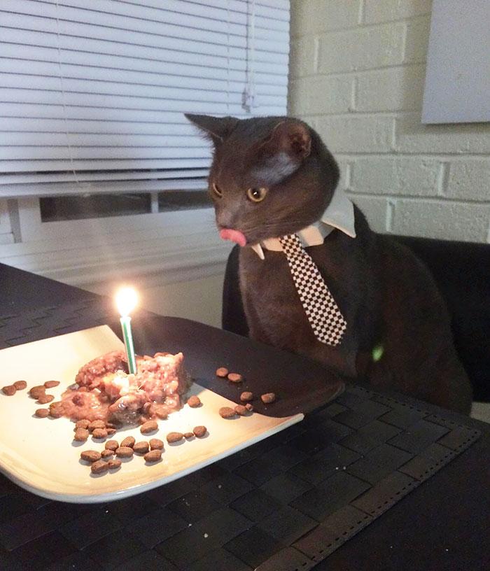 fiestas-cumpleanos-animales (13)