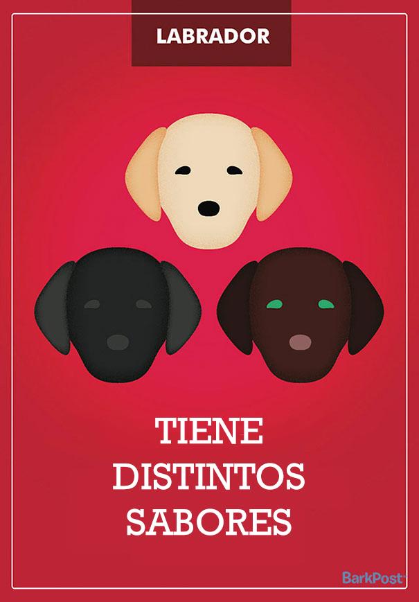 ilustraciones-eslogan-razas-perros-3