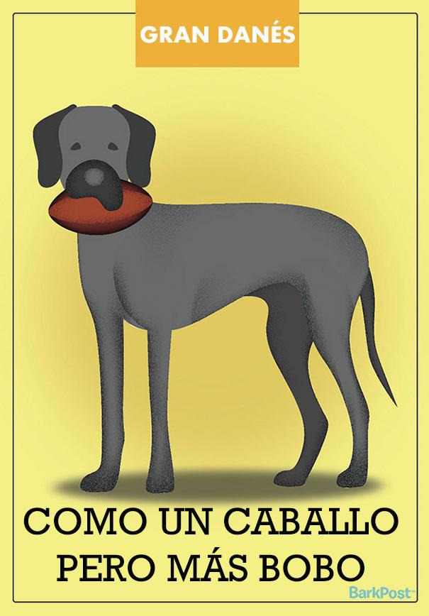 ilustraciones-eslogan-razas-perros-4