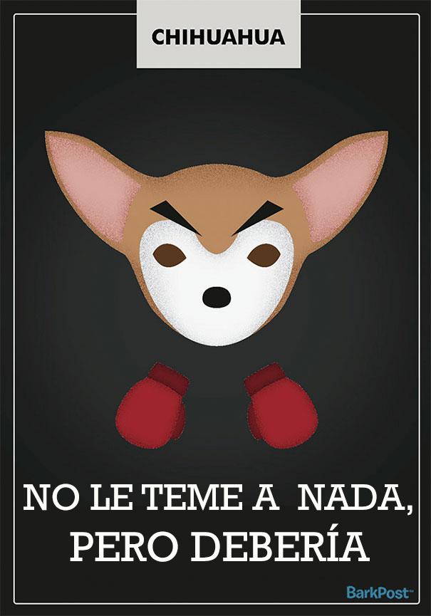 ilustraciones-eslogan-razas-perros-9