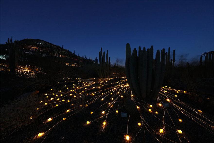 instalacion-luminica-campo-luz-bruce-munro-uluru (7)