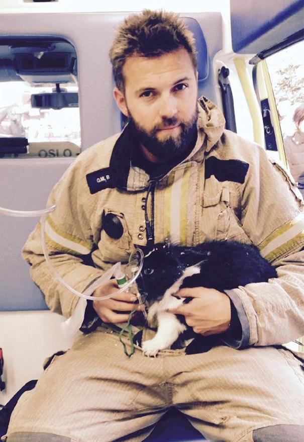bomberos-salvando-animales (15)