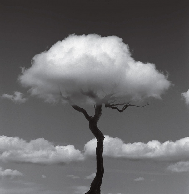 fotos-surreales-blanco-negro-chema-madoz (8)