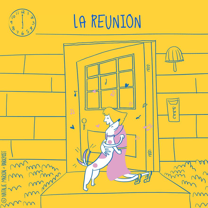ilustraciones-vida-mama-perro-natalie-marion-7