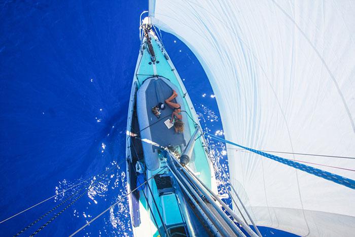 navegar-mundo-barco-gato-amelia-liz-clark (6)