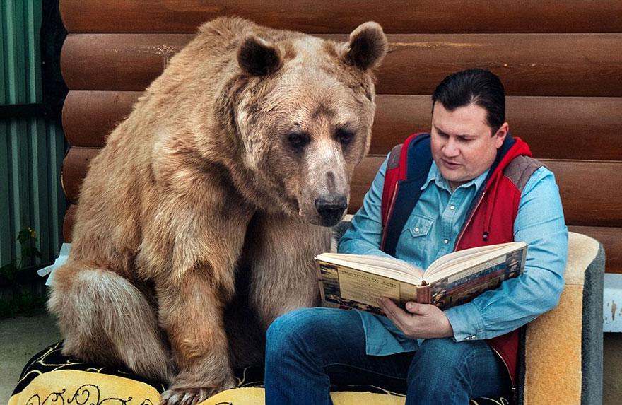 oso-adoptado-stepan-familia-rusa (2)