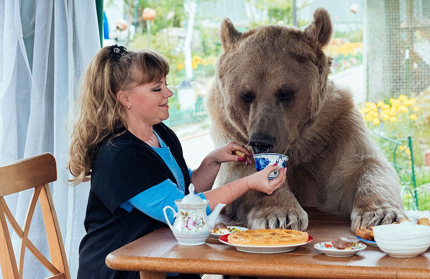 oso-adoptado-stepan-familia-rusa (3)