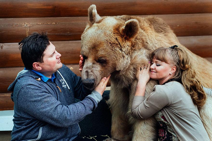oso-adoptado-stepan-familia-rusa (4)