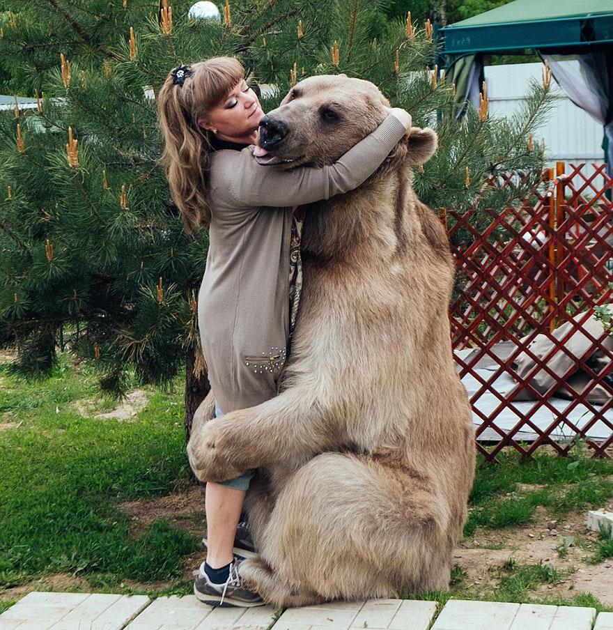 oso-adoptado-stepan-familia-rusa (5)