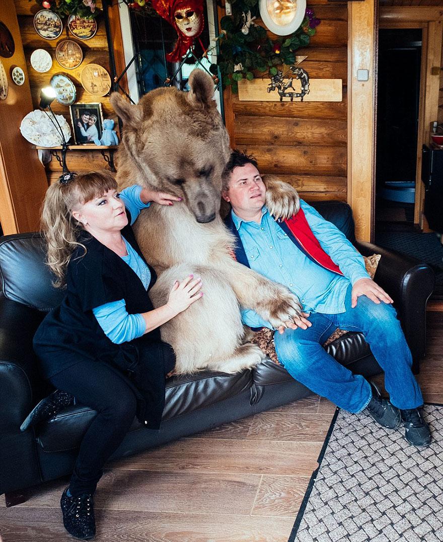 oso-adoptado-stepan-familia-rusa (8)