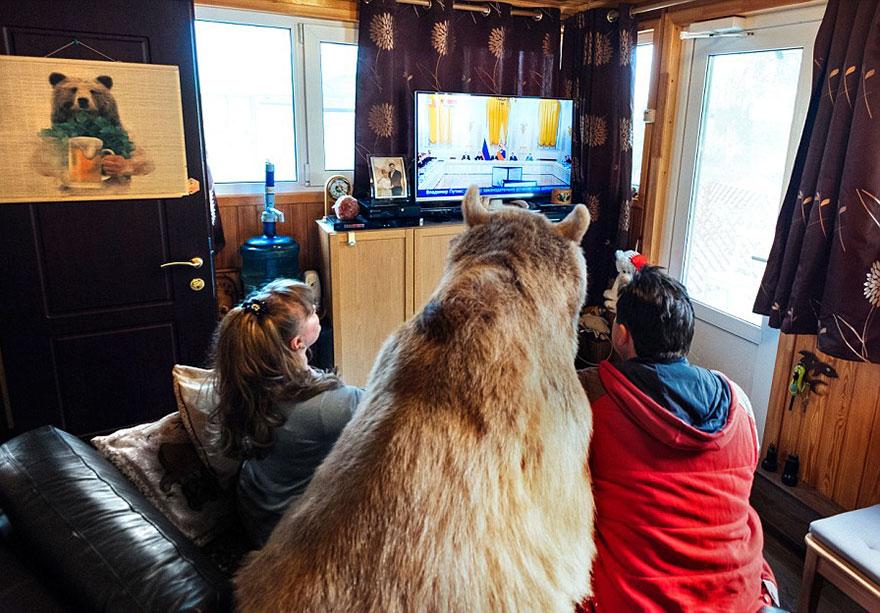 oso-adoptado-stepan-familia-rusa (9)