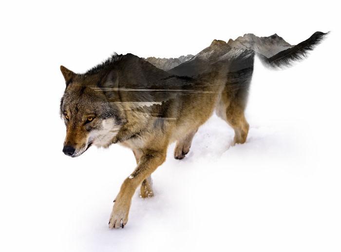 arte-digital-doble-exposicion-nevessart (3)