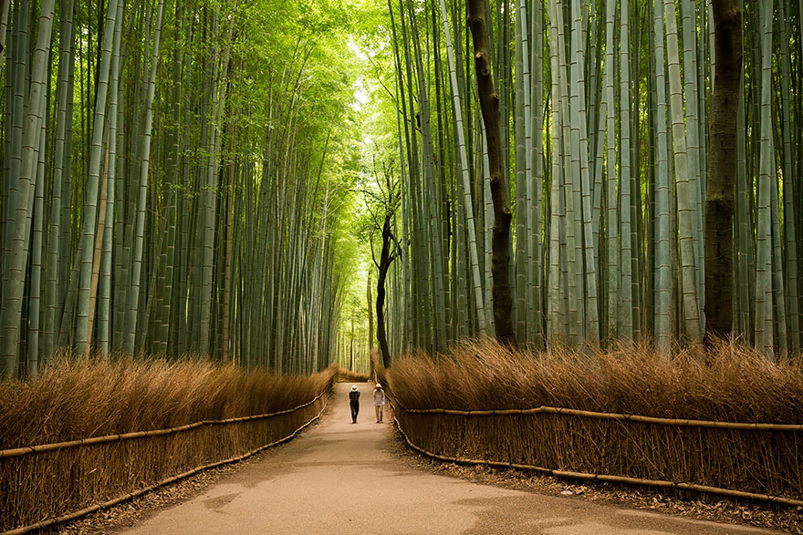 lugares-increibles-japon (1)