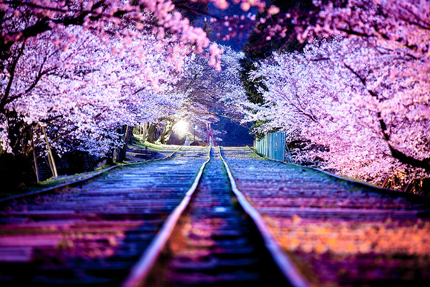 lugares-increibles-japon (5)