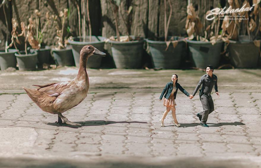 fotos-bodas-miniatura-ekkachai-saelow (9)