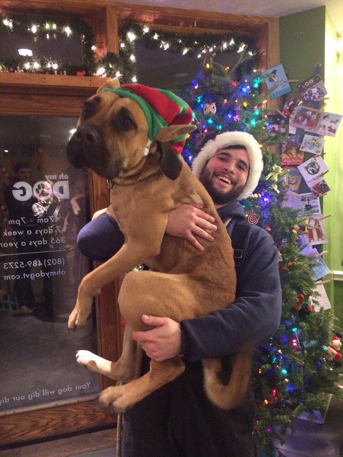 perros-adoptados-primer-dia-casa (11)